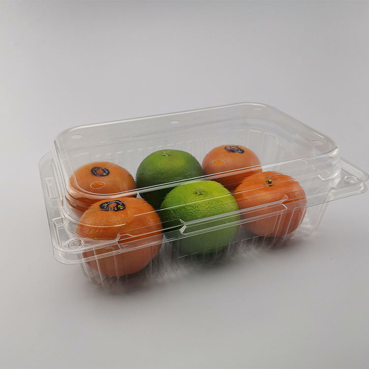 Eco Friendly transparent food fruit container disposable clamshell plastic fruit packaging box