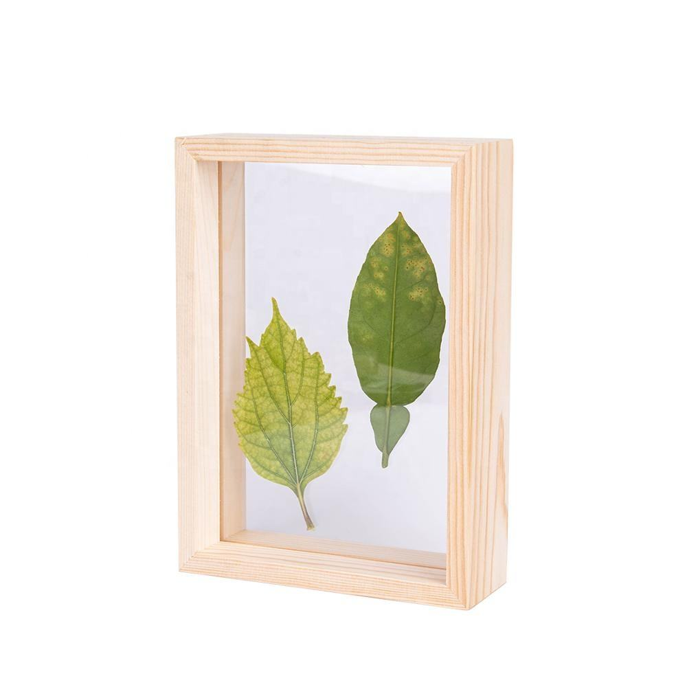 <span class=keywords><strong>4X6</strong></span> Hout Foto <span class=keywords><strong>Fotolijsten</strong></span> Dubbelzijdig <span class=keywords><strong>Acryl</strong></span> Herbarium Plant Specimen Frame Gedroogde Blad Bloemen Display Tafel Decoratie