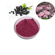 100% natural Elderberry extract purple powder for immunity enhancing