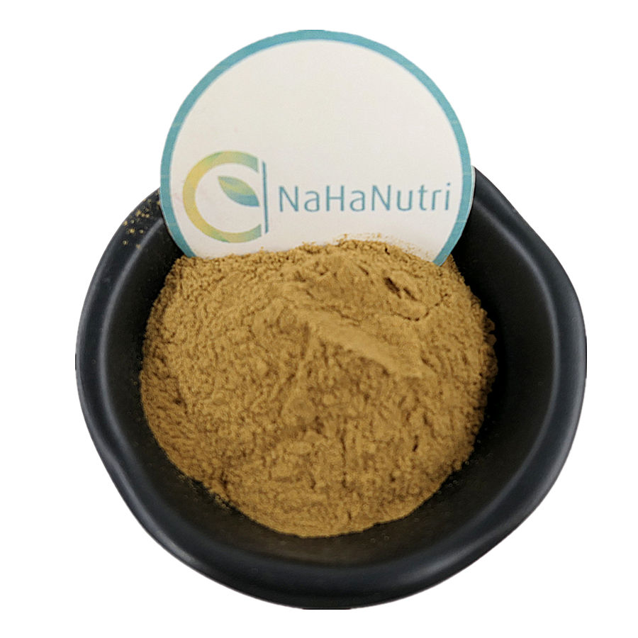 GMP Manufacture Ginger Powder BEST PRICE