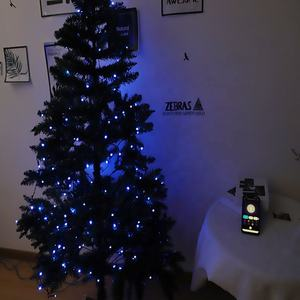 Smart Decoratie Aangepaste Led String Licht App Controle Licht String Met 20M Multi-color Rgb Led Kerstverlichting