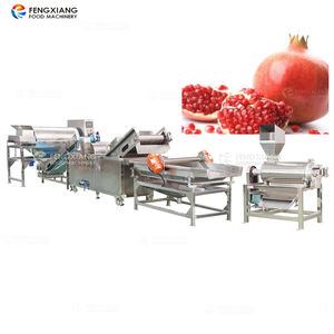 pomegranate peel extract juice machine cold presses seed separator machine