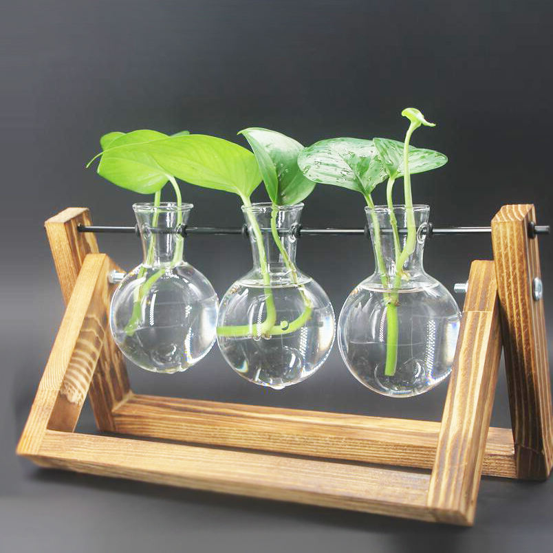 Borosilicate Glass Elegant Terrarium Wooden Stand Blown Glass Vase Plexiglass Terrarium Glass And Wood Vase Planter