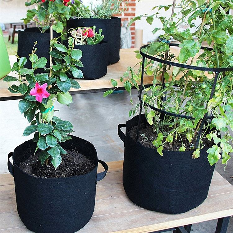 Vegetable Grow Bag Lychee 10 Gallon PE Potato Planter Grow Bag Vegetables Container Bag with Handles Pack of 2 13.78/'/'*19.68/'/'