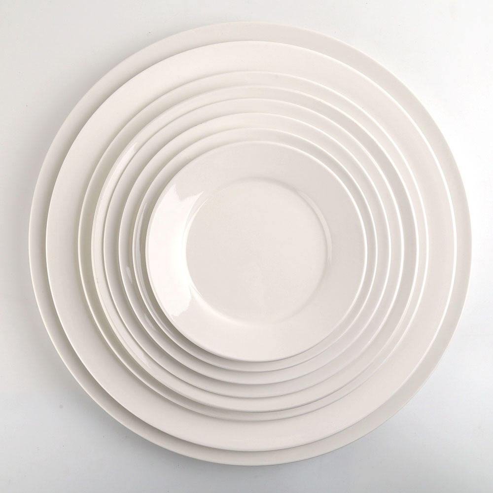 11 inch Round Ceramic Porcelain Dinner Service Plates Dishes Sets