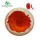 Best Price Food Color Paprika Red / Dried Red Chilli Powder