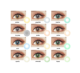 BeautyTone HD China very cheap cosmetics soft yearly colored contacts super natural eye wholesale color contact lens