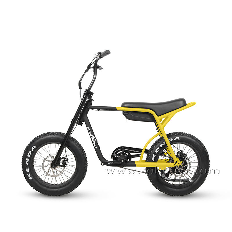 Retro Super Power Fat Tire Electric Bike for Sale