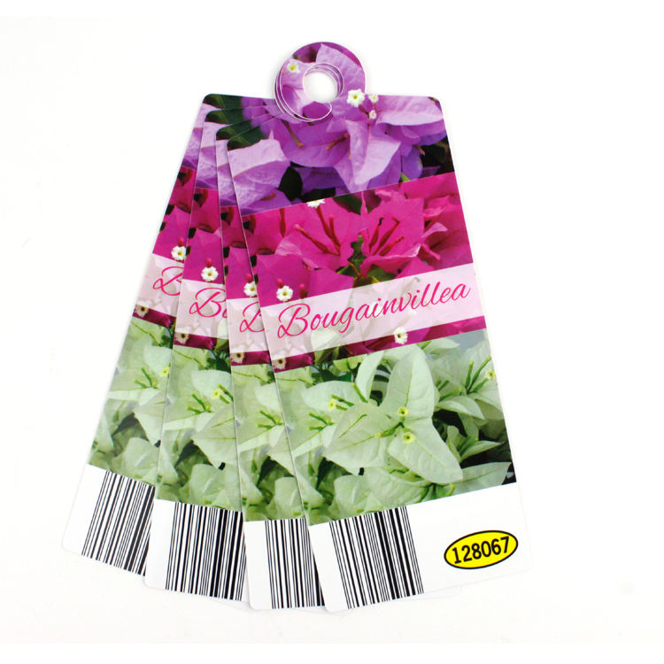 Plastic custom printed PP PVC flower tag and labels for nursery