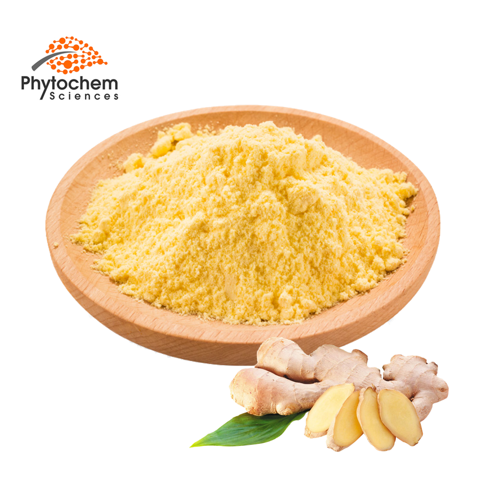 Organic Certified 100% Natural red/yellow Ginger Powder Pure dried Ginger Root Extract Powder