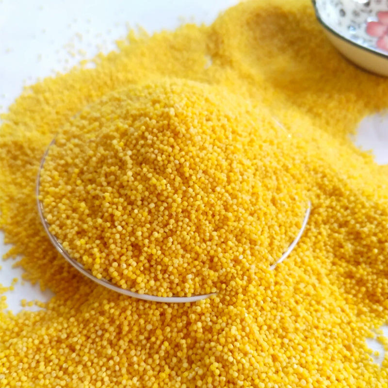 China Quality Manufacturer Millet For Human And Animal Consumption