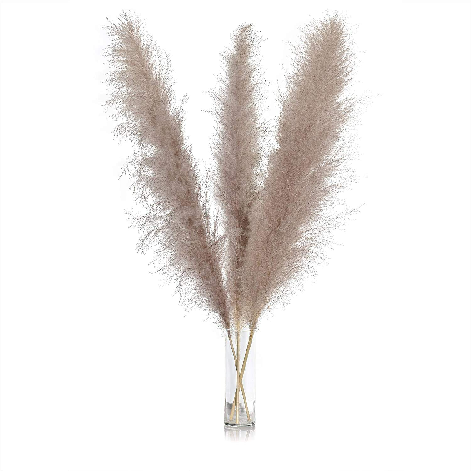 Wholesale Natural Dried Dry Reed Straw Large Decorative Gray Pampas Grass For Wedding