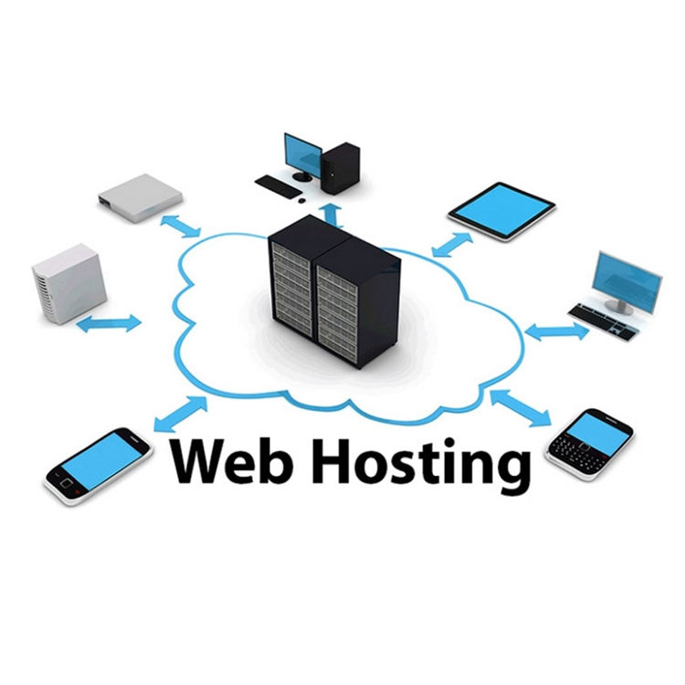 Premium Domain and Hosting Service