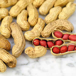 Dried Peanut  Kernel  for sale