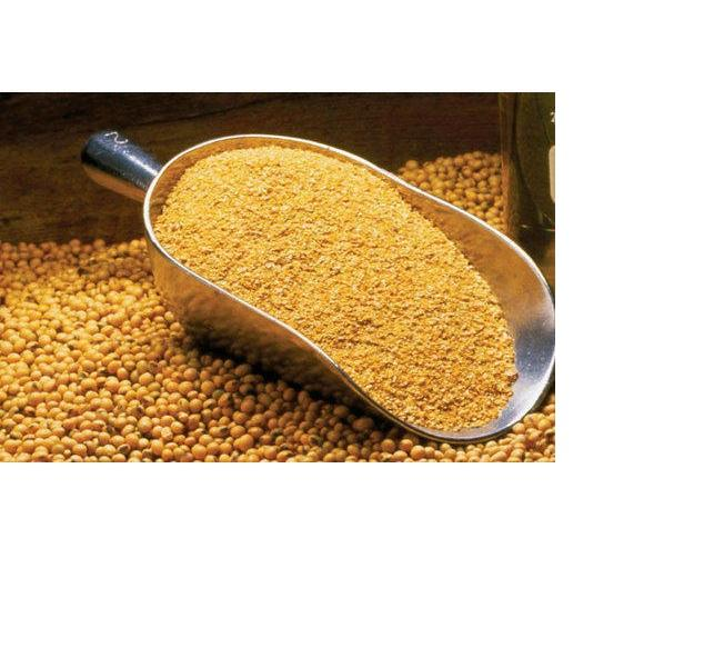 SOYBEAN ANIMAL MEAL Ready Exporters from Iowa origins farms