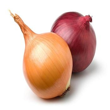 Quality Fresh Red Onions,Vegetables New Crop for Wholesale White Onion