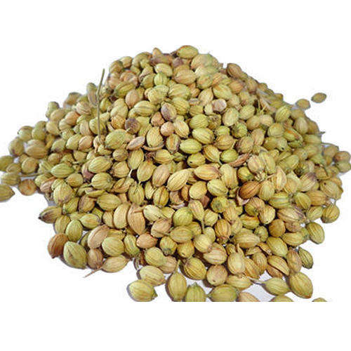 100% Natural Organic Coriander Seeds factory price wholesale
