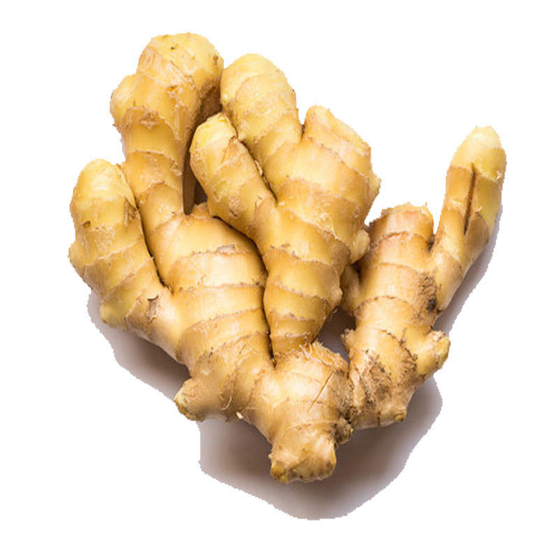Cheapest Price Fresh Style and HACCP, ISO Certification ginger from South Africa supplier
