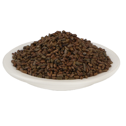 Excellent Quality Cassia Tora Seeds for Export