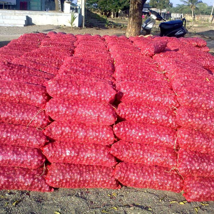 Top Quality Best Selling Indian Red Onions