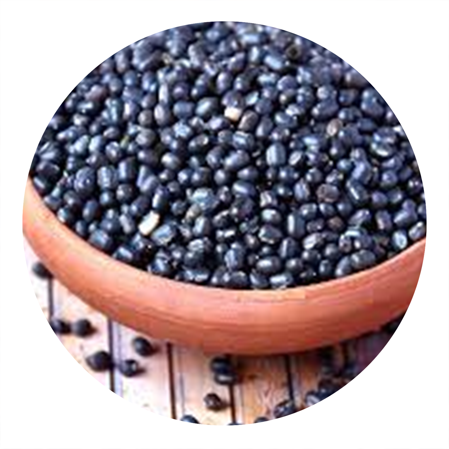 High quality Dried Black beans Healthy Black bean From Vietnam