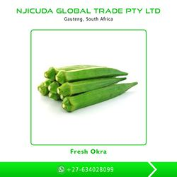 High Quality Competitive Price Fresh Okra (Lady Finger Okra)