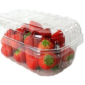 Disposable Plastic Transparent PET Fruit clamshell container with air holes