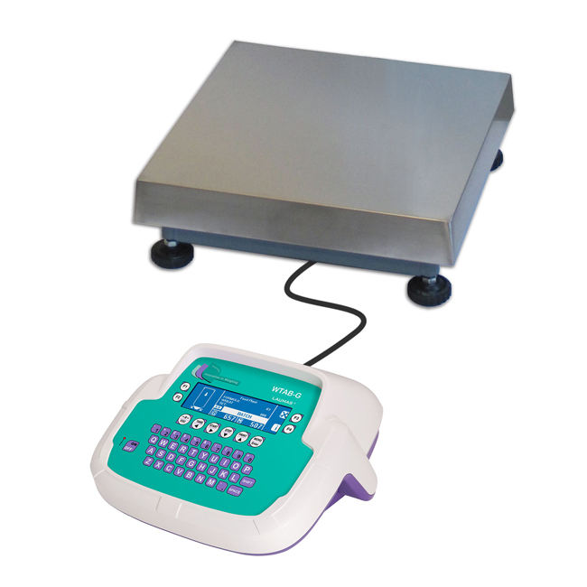 Electronic Industrial Weighing Counting Digital Platform Scale 30KG
