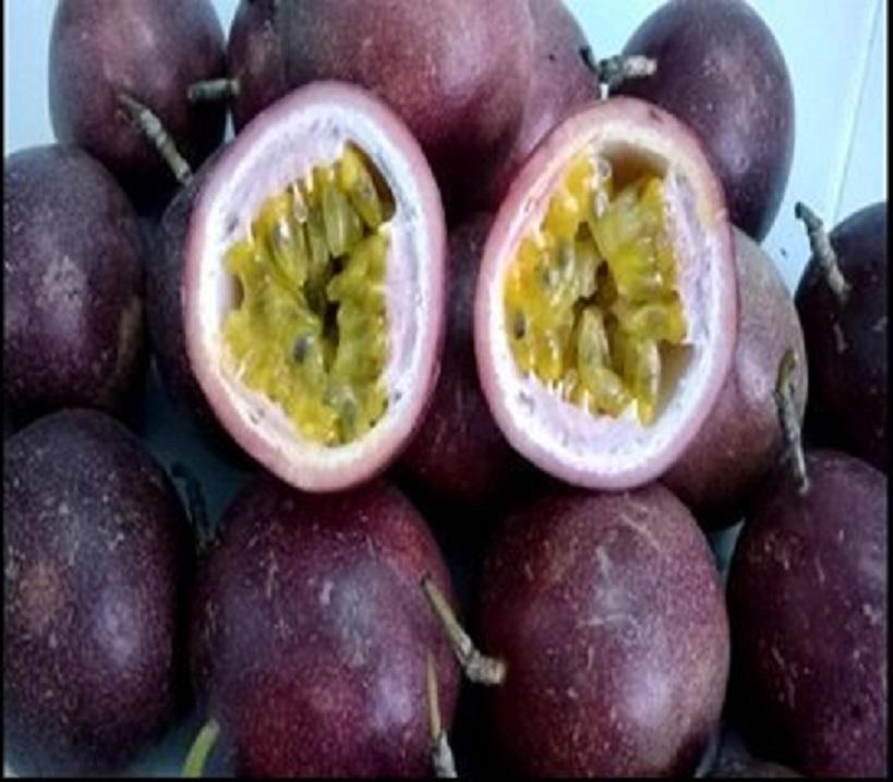 fresh organic passion fruit available
