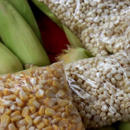 PREMIUM GRADE HIGH QUALITY YELLOW CORN / WHITE MAIZE FOR HUMAN CONSUMPTION