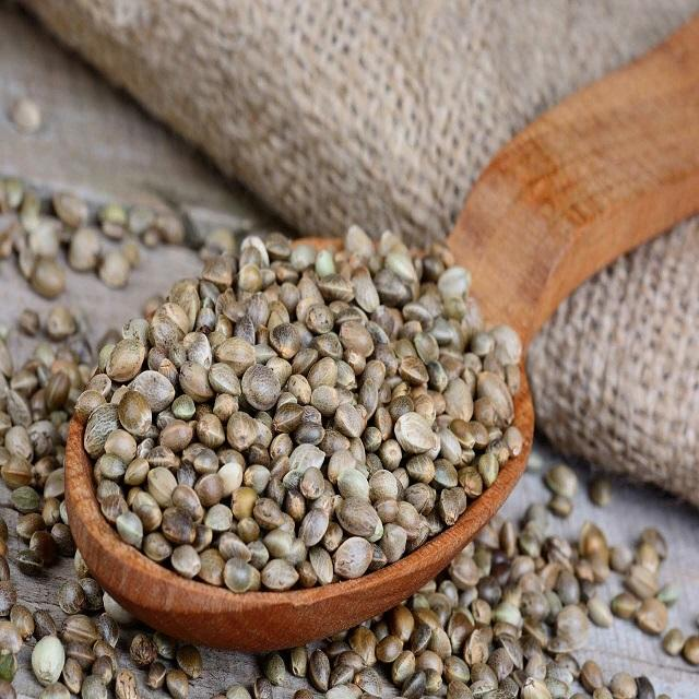 Hemp seed supply all kinds of seeds chia seed