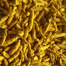 Factory supply best  and good  quality Indian origin  organic Turmeric curcumin Powder