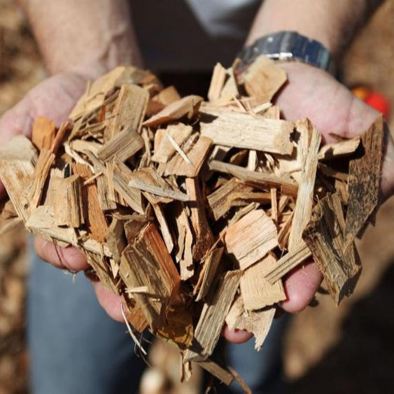 WOOD CHIP COMPETITIVE PRICE - ACACIA WOOD CHIPS FOR PAPER PULP