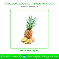 Reasonable Price Widely Demanded Fresh Pineapple