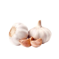 FRESH GARLIC FROM VIETNAM HIGH QUALITY BEST PRICE