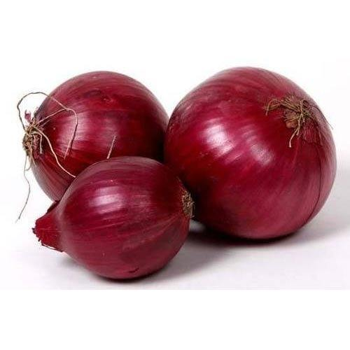 Fresh Red Onion Exporters in Pakistan