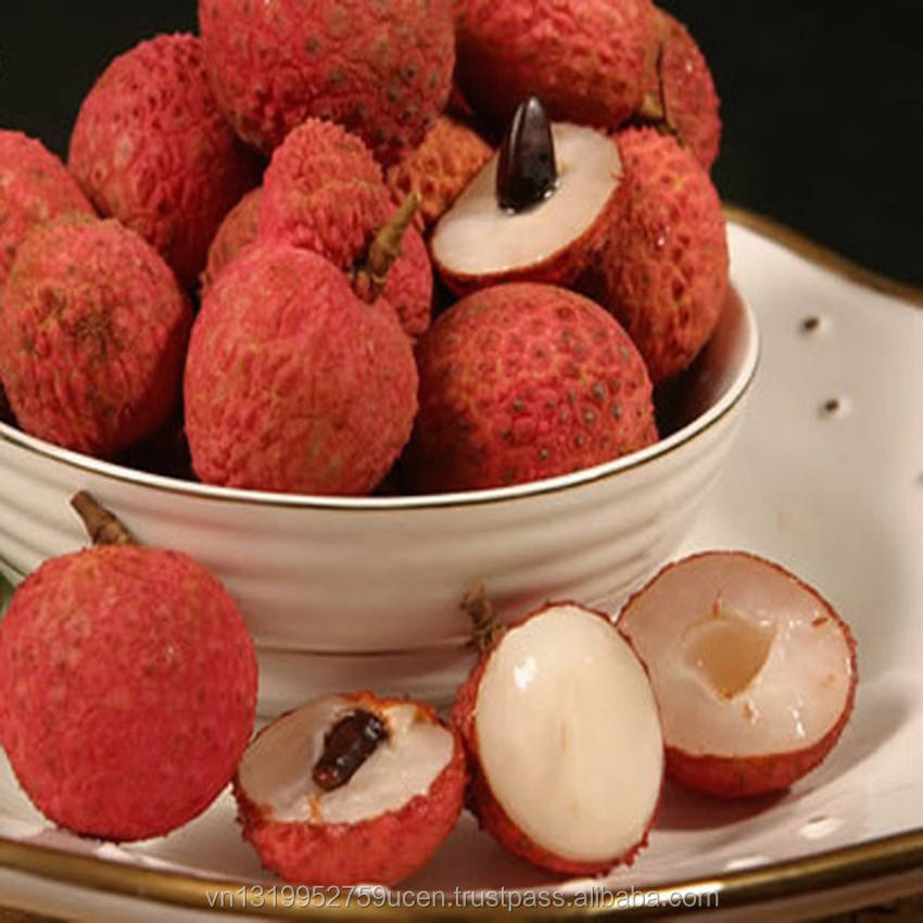 Best quality canned Lychee from Vietnam