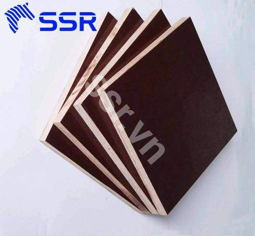 Formwork plywood competitive price from Vietnam