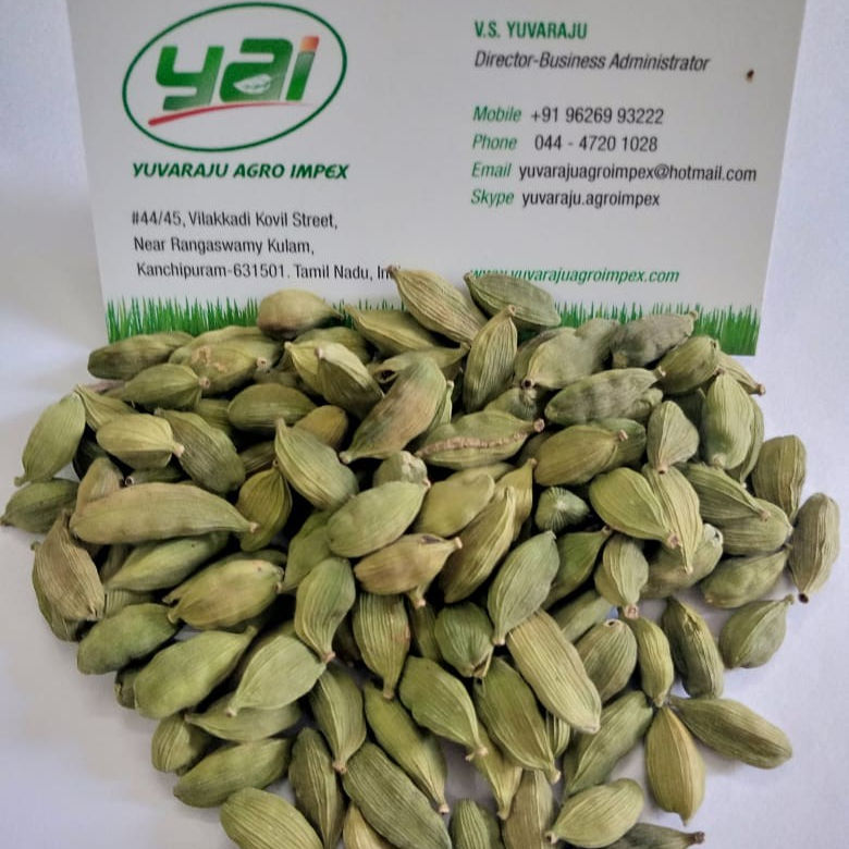 2021 Crop Cardamom supplier in India