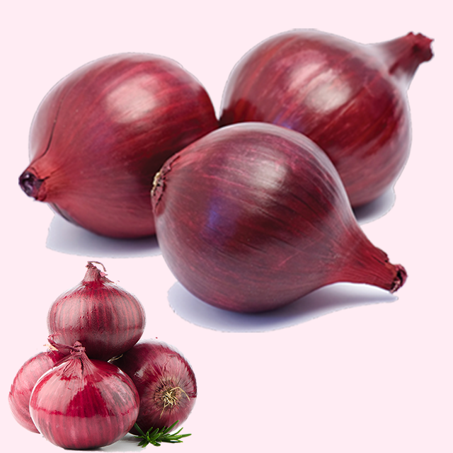 lowest price fresh red onion/yellow onion/white onion - Top Grade
