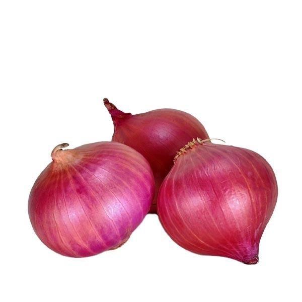 Best selling products onions, onion from Pakistan , Export Quality Onion