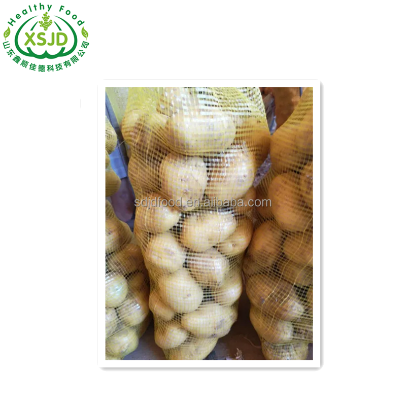 fresh seed potato for sale