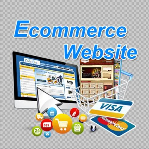 Ecommerce Business Website Services PayPal Accepted Online Stores Website Development Web Designers and Developers Online Store