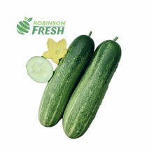 US Grown Fresh Cucumber Green Robinson Fresh MOQ 10 pieces Quick Delivery in US