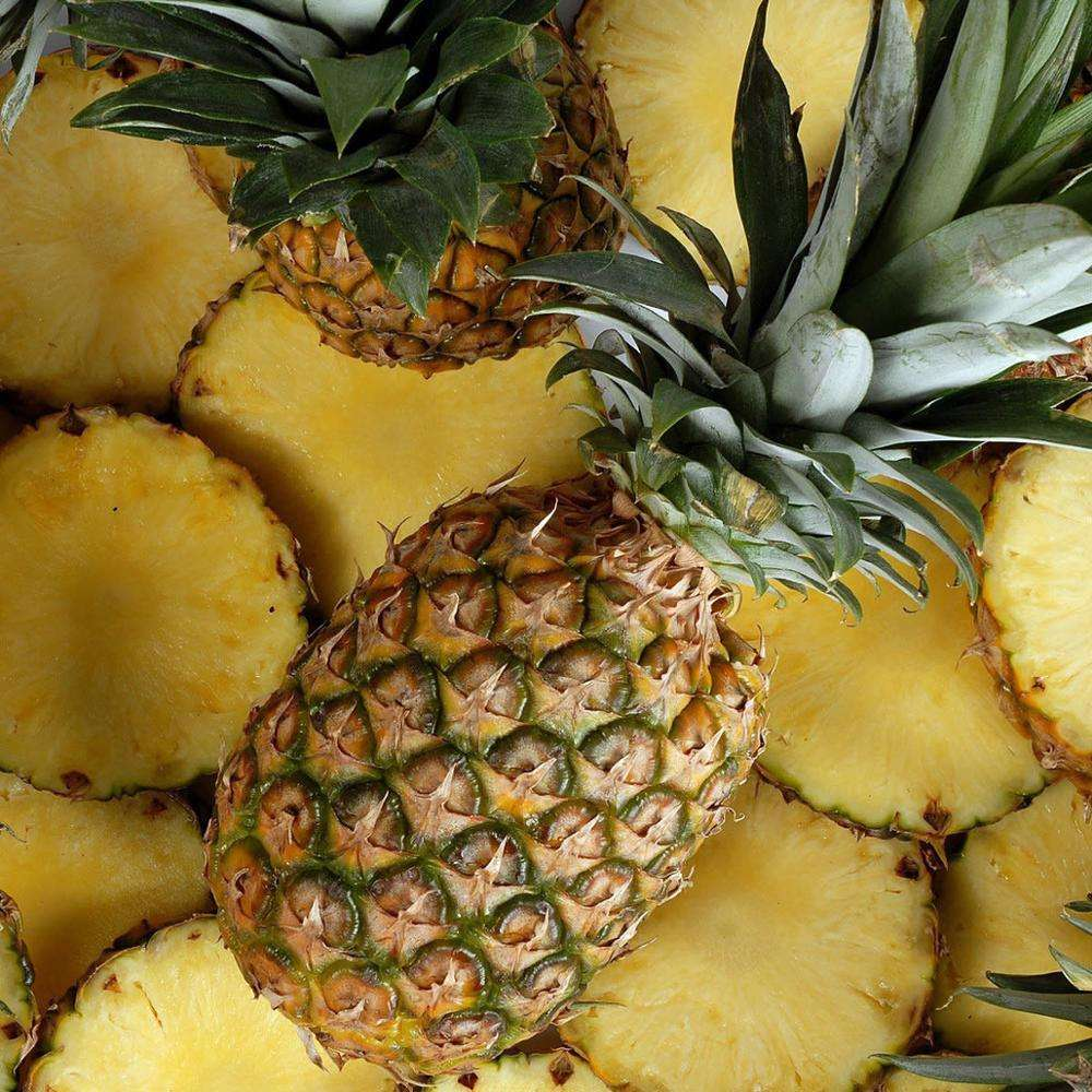 Fresh Pineapples Fruit Freeze Dried Pineapple slice Suppliers canned pineapple