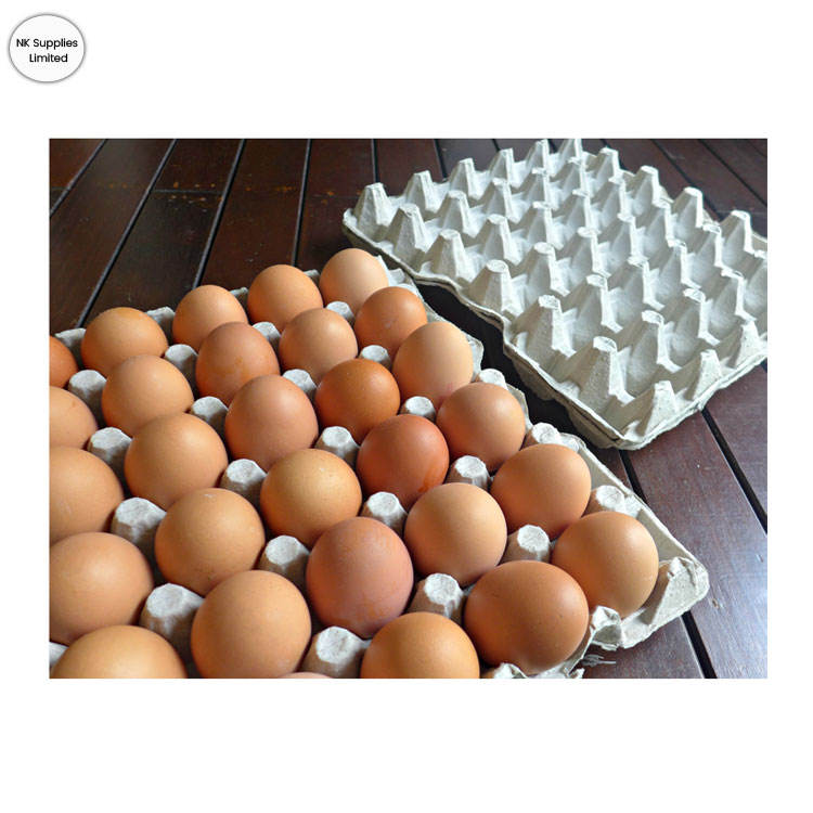 Exclusive Sale on Fresh Quality Chicken Eggs from Bulk Exporter