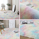 Carpet Coffee Modernmodern Carpet Bedroom Bedside Blanket Tatami Living Room Coffee Table Cushion Bay Window Balcony Plush Rainbow Carpet 40x60cm