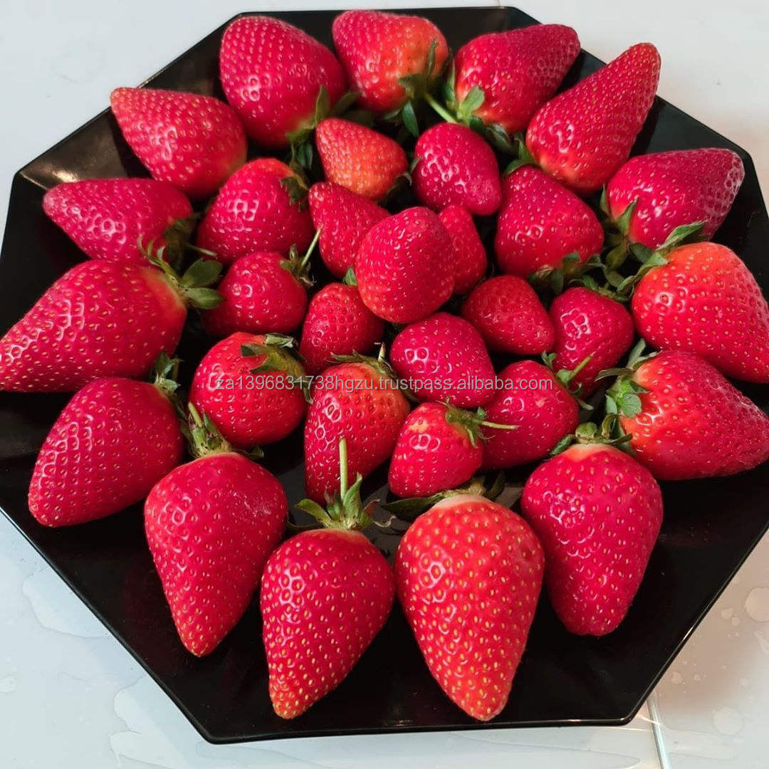Strawberry Fruit Fresh Strawberry Wholesale