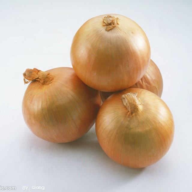 Onion Price 1KG For Malaysia Fresh Onion Prices Onions In Bulk