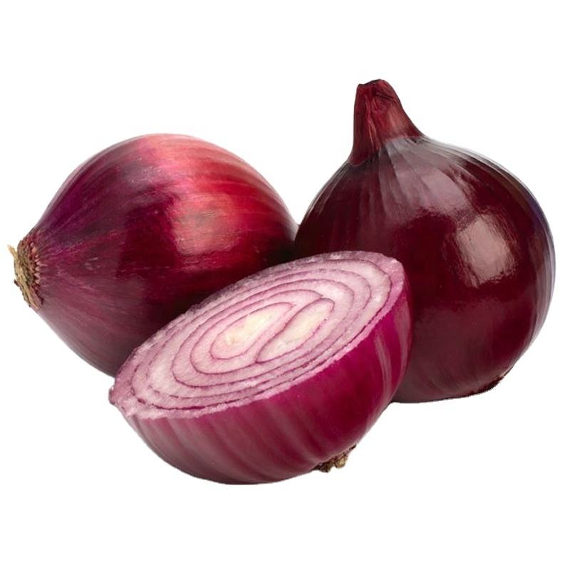 New Crop Fresh Red Onion
